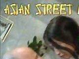 Asian Robin 3